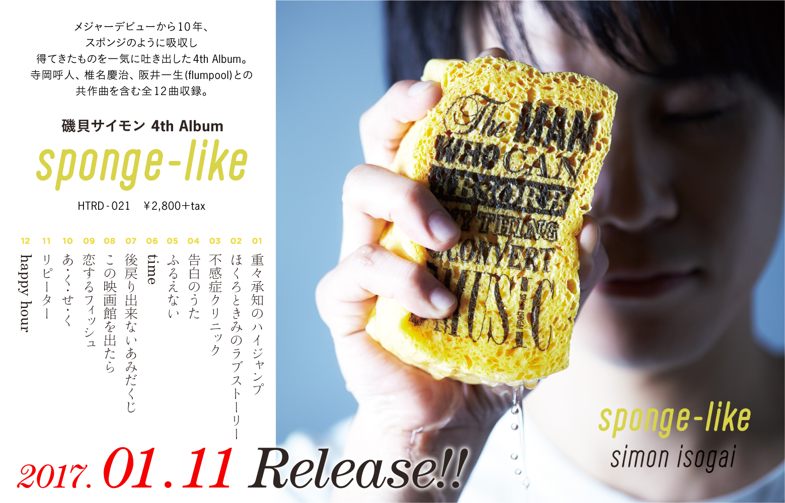 sponge-like2
